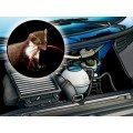 Come evitare che i topi entrano in auto