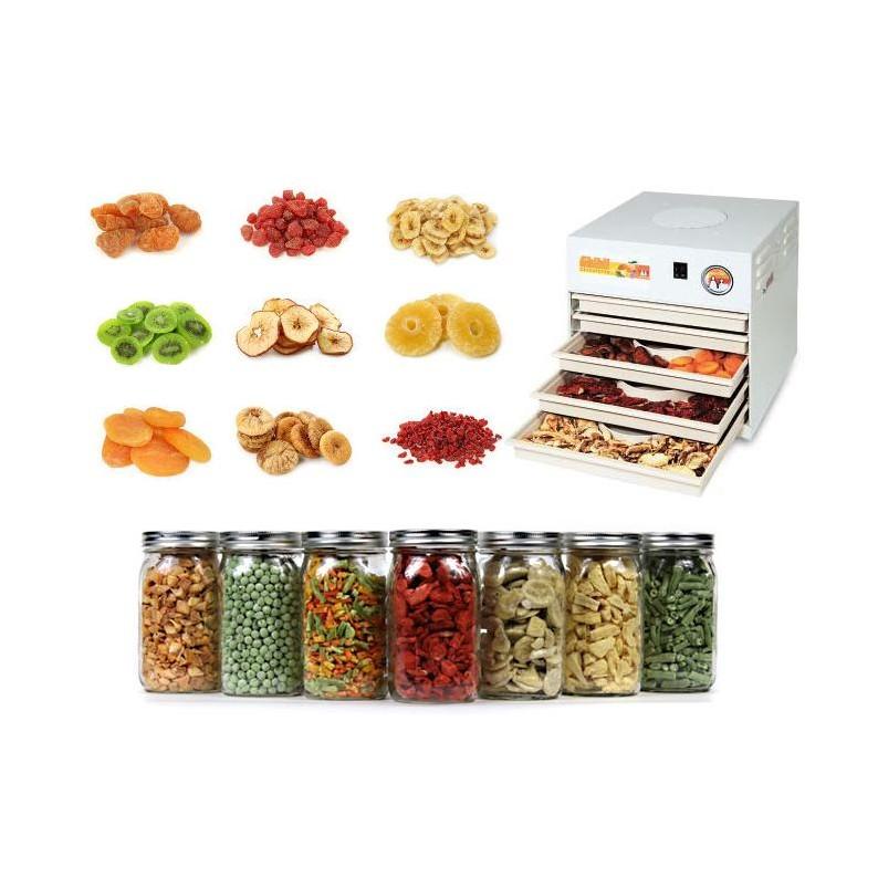 essicca frutta elettrico con aria calda 1100 W