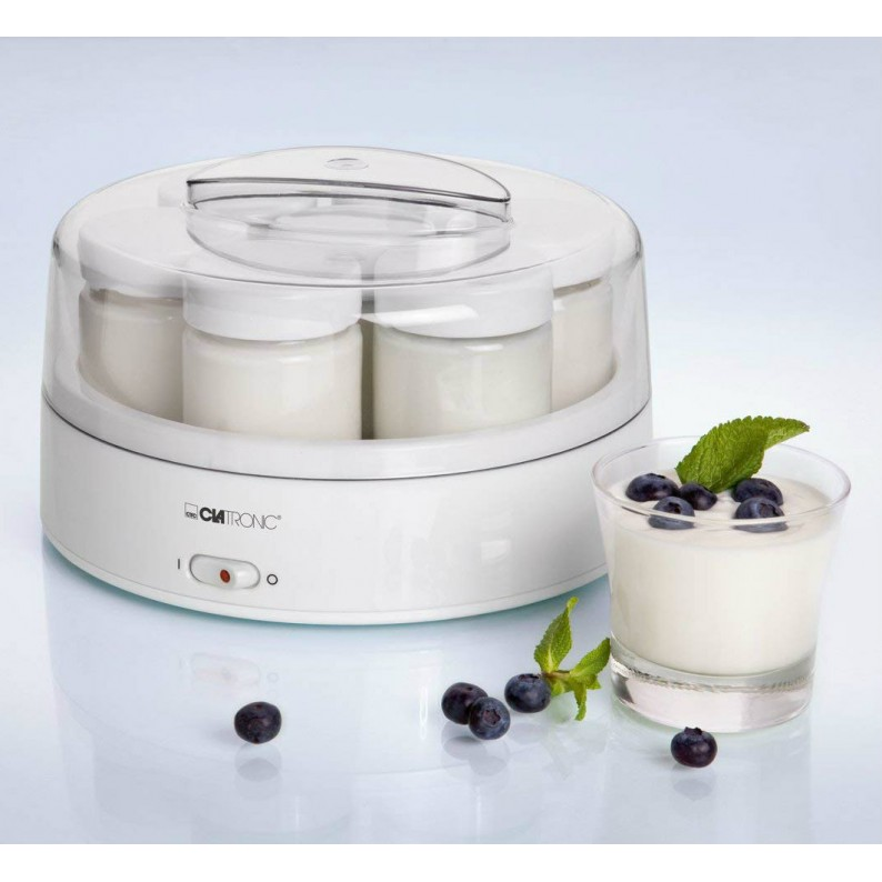 Yogurt fatto in casa con frutta